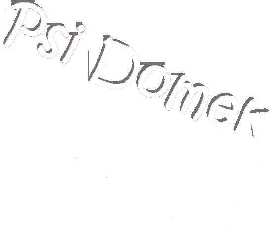 PsiDomek - Hotel dla psów